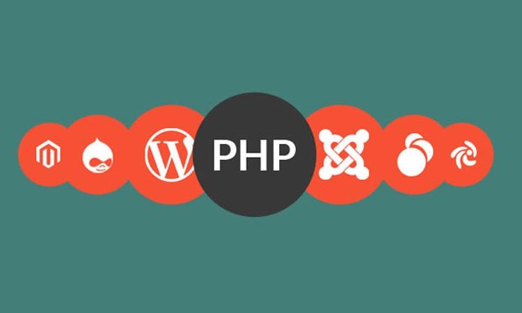 Welches Framework eignet sich am besten für die WEBSITE-ENTWICKLUNG?