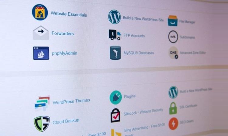 Websites Entwicklung